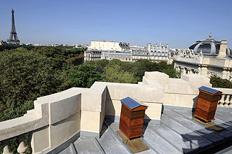 The roof of the Grand Palais, Paris holds two bee hives. -- PHOTO: AFP