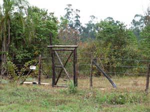 Apiary main entrance.