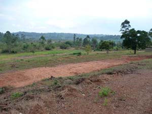 Plot for honey refinery and training centre.