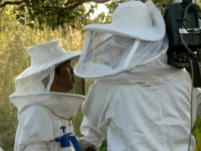 It took quite some time for the host of the program to pluck up the courage to approach the bees.
