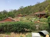 Nepal_bee_centre